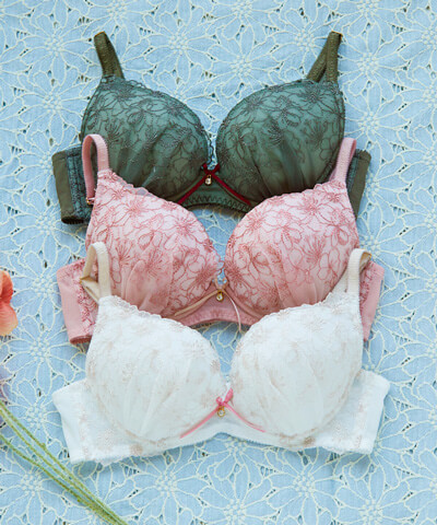 【northerly bra フィットシリーズ 楽ちんフィット】ツタ刺繍柄ブラジャー&ショーツセット B65~F75 【northerly】